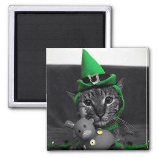 Magnet - Cat Themed