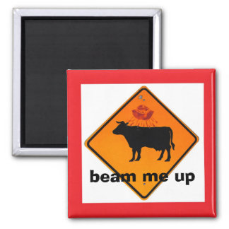 magnet cow ufo road sign beam me up