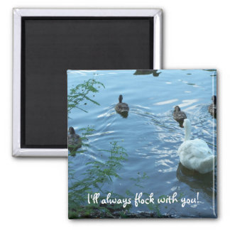 Magnet I'll always flock with you!