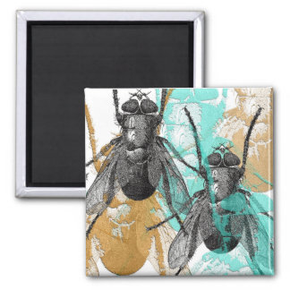 Magnet Insecta 1