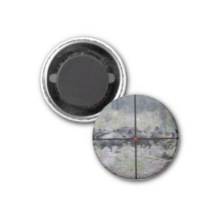 magnet jabalí imán