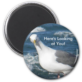 Magnet:  Looking Gull Magnet