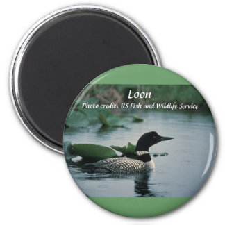 Magnet / Loon on Water