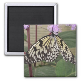 Magnet - Paper Kite Butterfly