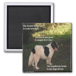 Magnet Poem Any Dogs Dream Ladee Basset