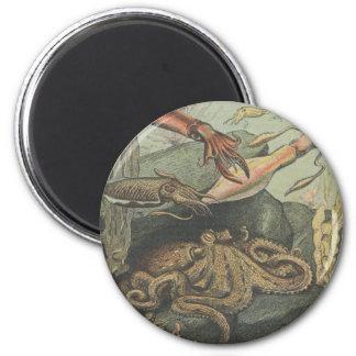 magnet pulpo y pulpos steampunk imán redondo 5 cm