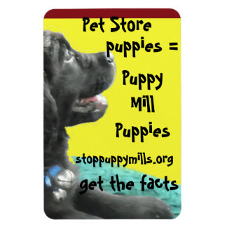 Magnet puppy mill awareness