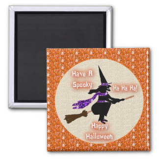 Magnet Skeleton Broom Stick Witch