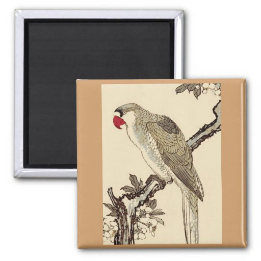 Magnet, Square, Japanese parrot 2 Inch Square Magnet