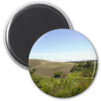Magnet: Templeton CA Wine Country 2 Inch Round Magnet