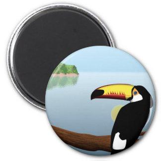 Magnet Toucan