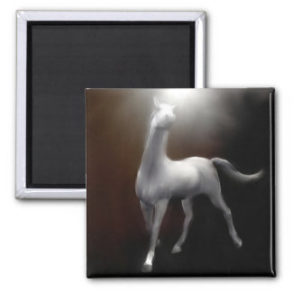Magnet - White Horse Painting Light in Darkness