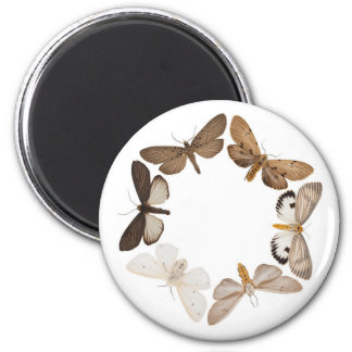 Magnet with butterfly ring
