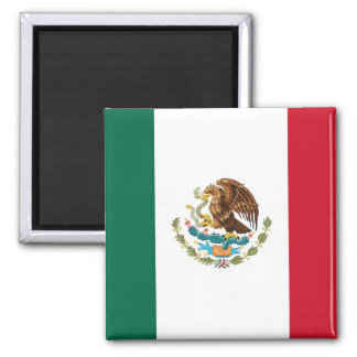 Magnet with Flag of Mexico