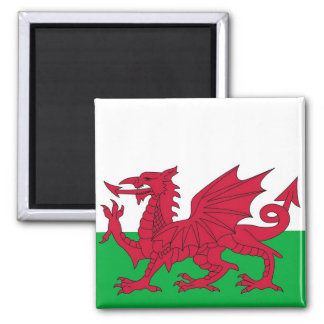 Magnet with Flag of Wales