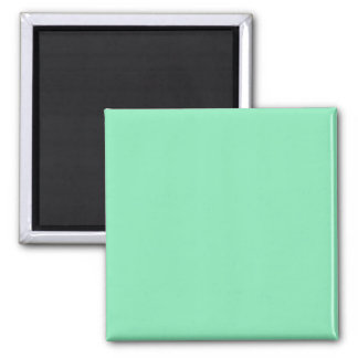 Magnet with Mint Green Background