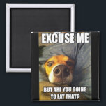 "MAGNET WITH SAYINGS<br><div class=""desc"">THIS CUTE DOG WONDERING IF HE IS GOING TO BE GETTING SOME TO</div>"