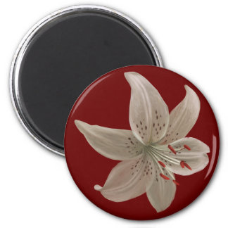 Magnet with white lilly
