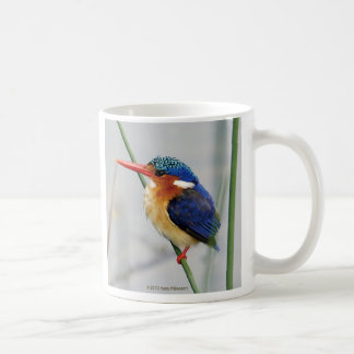 Magnetic cup of kingfisher