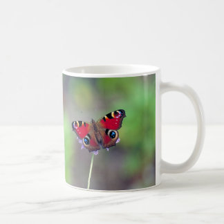 Magnetic cup of peafowl butterfly
