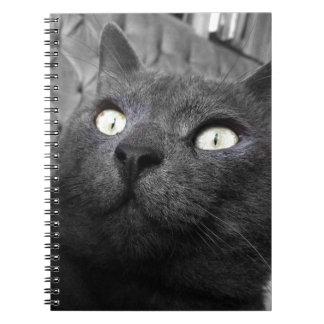 Magnetic eyes notebook