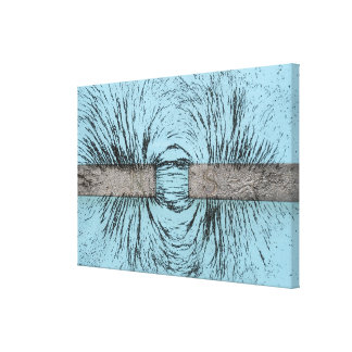 Magnetic Field Illustrated Using Iron Filings Arou Canvas Print