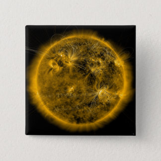 Magnetic field lines on the Sun Pinback Button