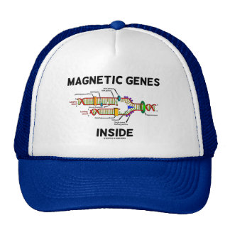 Magnetic Genes Inside (DNA Replication) Hat