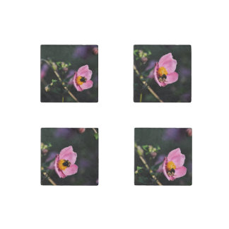 Magnets-Busy Bee Pink Flower Japanese Anemone Stone Magnet