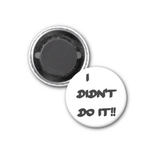 Magnets - I Didn't Do It!!