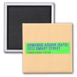 armando aguiar (Rato)  2013 smart street  Magnets (more shapes)