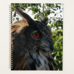 "Magnificent eagle owl. planner<br><div class=""desc"">Taken at a local vineyard at a bird of prey show.</div>"
