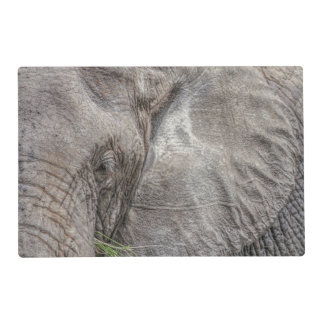 Magnificent Elephant Laminated Placemat