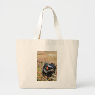 Magnificent frigate bird Galapagos Islands Tote Bags