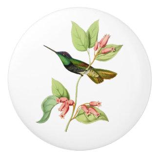 Magnificent Hummingbird Ceramic Knob