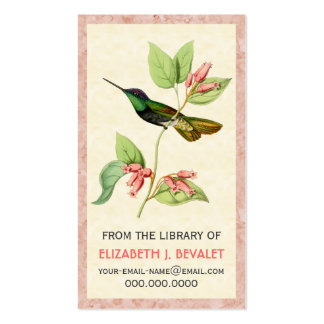 Magnificent Hummingbird Personalized Media Cards