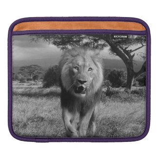 Magnificent Lion Sleeve For iPads