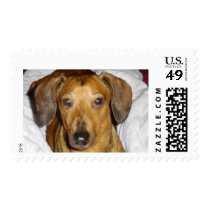 MAGNIFICENT MICKEY POSTAGE STAMP