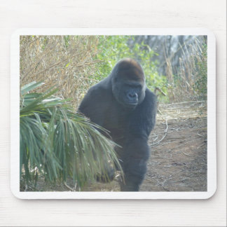 Magnificent Mountain Gorilla Mouse Pad