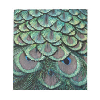 Magnificent Peafowl Feather Eyes Notepad