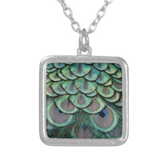 Magnificent Peafowl Feather Eyes Silver Plated Necklace