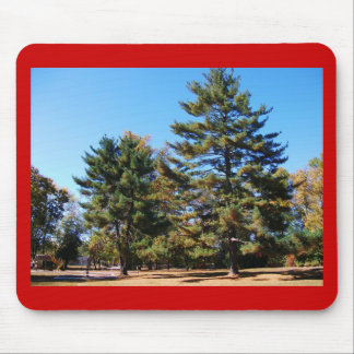 Magnificent Pine Mouse Pads