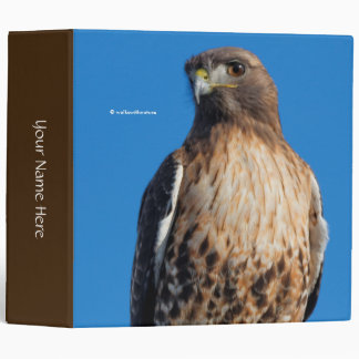 Magnificent Red-Tailed Hawk in the Sun 3 Ring Binder