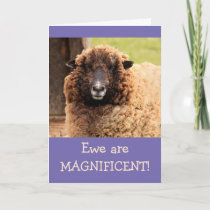 Magnificent Sheep Happy Birthday Card
