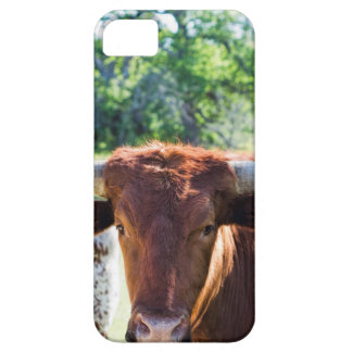 Magnificent Texas Longhorn Bull iPhone 5 Covers