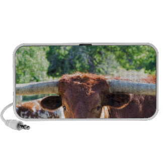 Magnificent Texas Longhorn Bull Mp3 Speakers