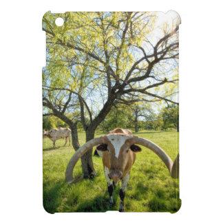 Magnificent Texas Longhorn Steer iPad Mini Cases