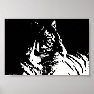 Magnificent Tiger poster
