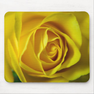 Magnificent yellow rose macro picture mouse pad