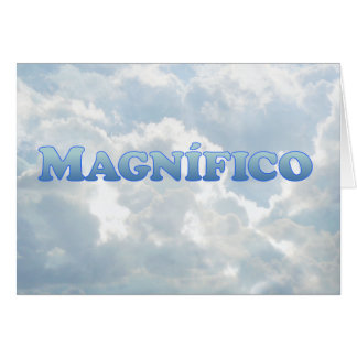 Magnifico (magnificient in Spanish) - Mult-Product Card